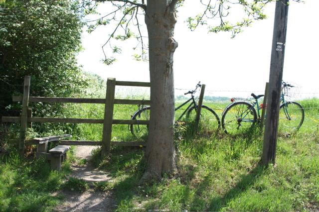 Bikes-granchester